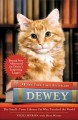 Go to record Dewey : the small-town library cat who touched the world